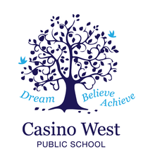 Casino West Public School - Melbourne Private Schools