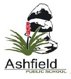 Ashfield Public School - Melbourne Private Schools
